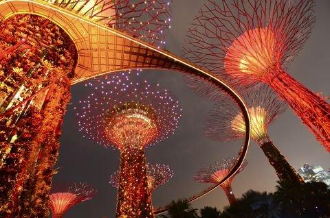 לאכול את הרחוב - תרבות סנגפורית